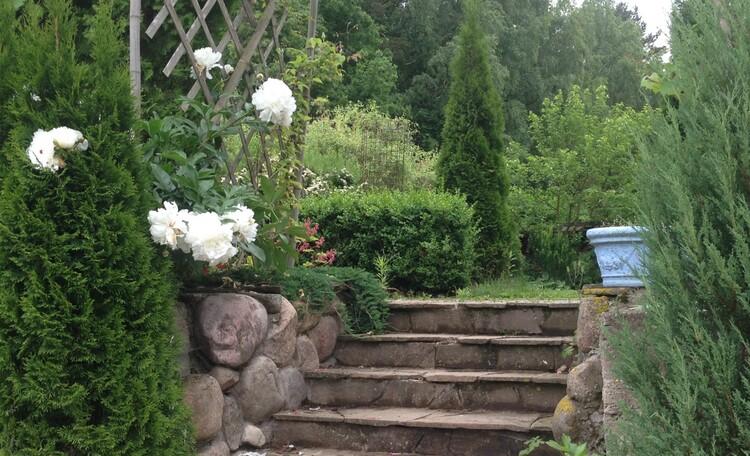 Villa Iconic Garden