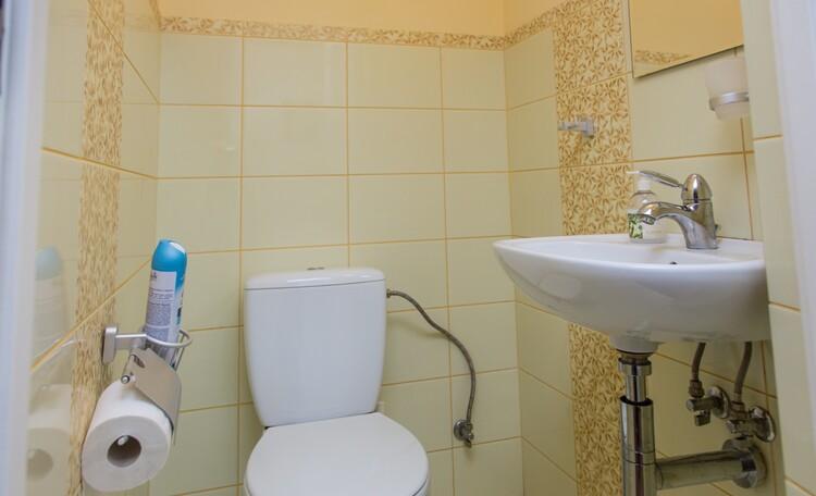 «Паулинка» в Беловежской пуще, туалет в доме