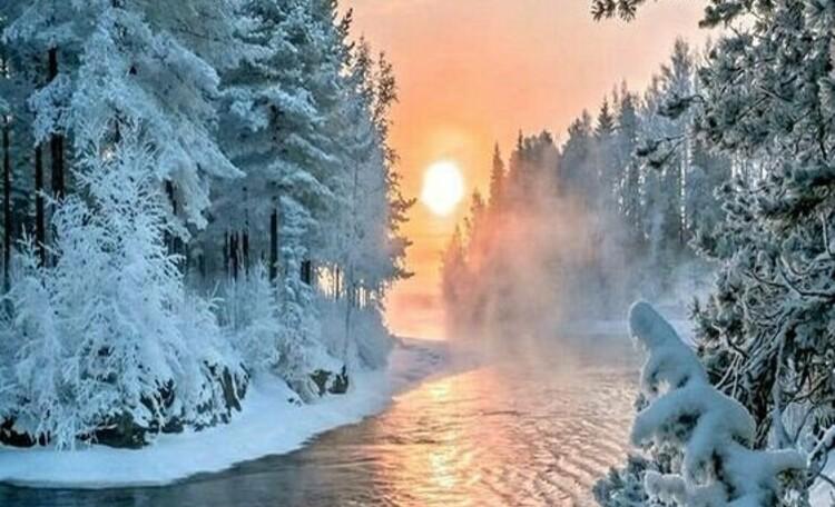"""Усадьба """"Солнечный домик""""  в Беловежской пуще, Окрестности нашей усадьбы. Зима."""