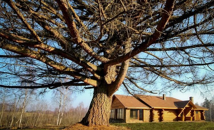 Усадьба «Кантри», VIP отдых в белорусской усадьбе «Кантри» на хуторе