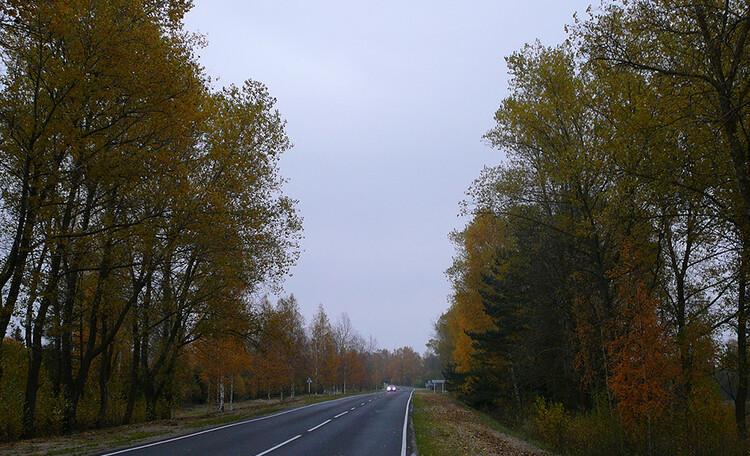 Агроусадьба «Мацейкава сяліба», Вот такие дороги ведут в Перебродье!