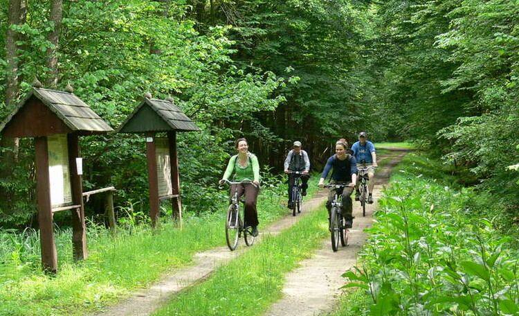 """Усадьба """"Солнечный домик""""  в Беловежской пуще, Велопрогулка. Очень красивые маршруты."""