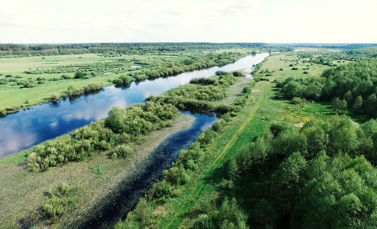 Усадьба «Березинская мечта» у реки
