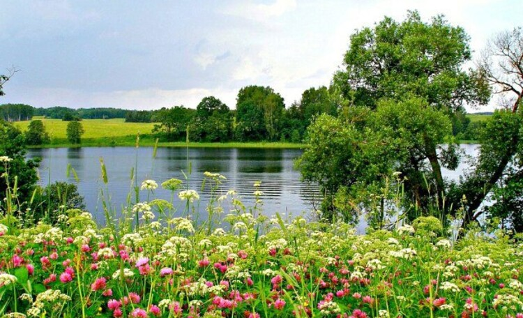 """Усадьба """"Солнечный домик""""  в Беловежской пуще, Окрестности нашей усадьбы. Лесное озеро."""