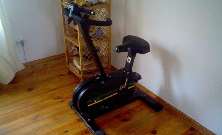 Усадьба «У Гавриловича», Из развлечений электронный дартс в доме, велосипедный тренажер