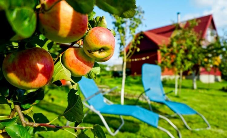 "Farmstead ""Ustie LIFE"", Место для отдыха.."