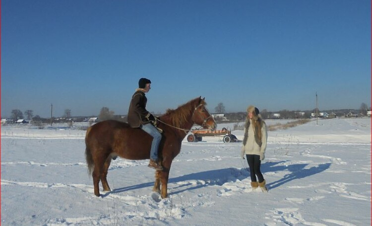 Vladimirskaya farmstead