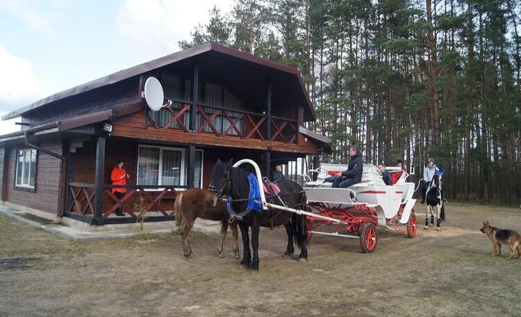 "Farmstead ""Lesnaya skarbnica"""