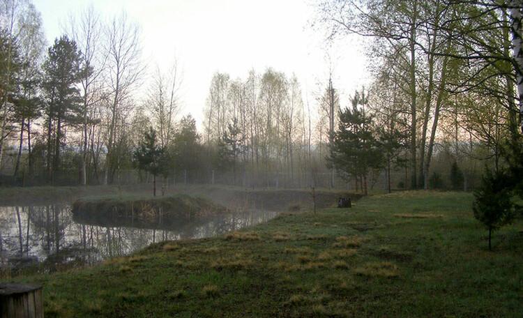 Агроусадьба «Заезд Зубачи», Пруд