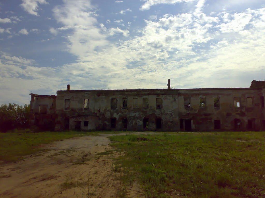 Быховский замок